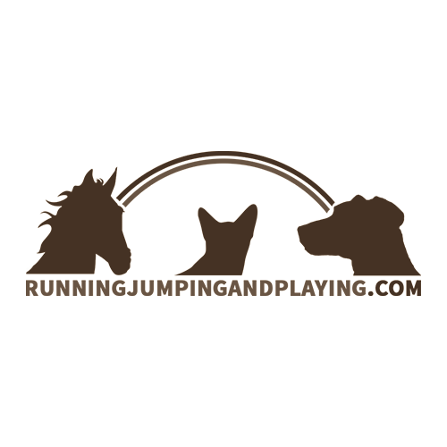 Running, Jumping and Playing Project